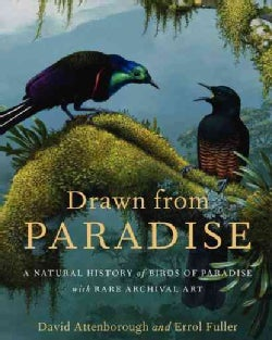 Drawn From Paradise: The Natural History, Art and Discovery of the Birds of Paradise (Hardcover)