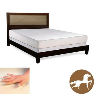 Christopher Knight Exquisite 8-inch King-size Memory Foam Mattress