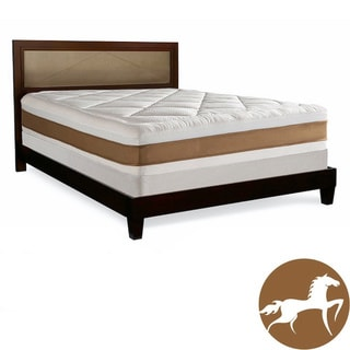 Christopher Knight 13-inch King-size Memory Foam Mattress