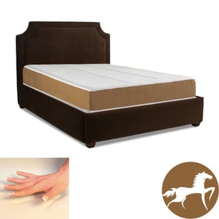 Spinal Response Aspiration 11-inch King-size Memory Foam Mattress