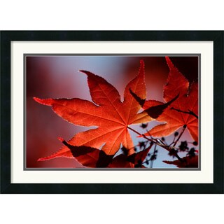 Andy Magee 'Red Maple' Small Framed Art Print
