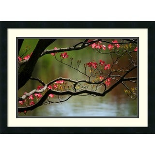 Andy Magee 'Dogwood in Bloom' Small Casual Framed Art Print