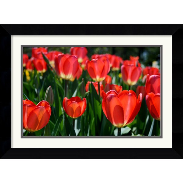 Andy Magee 'In the Garden' Framed Art Print