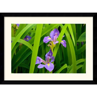 Andy Magee 'Purple Iris' Framed Modern Art Print