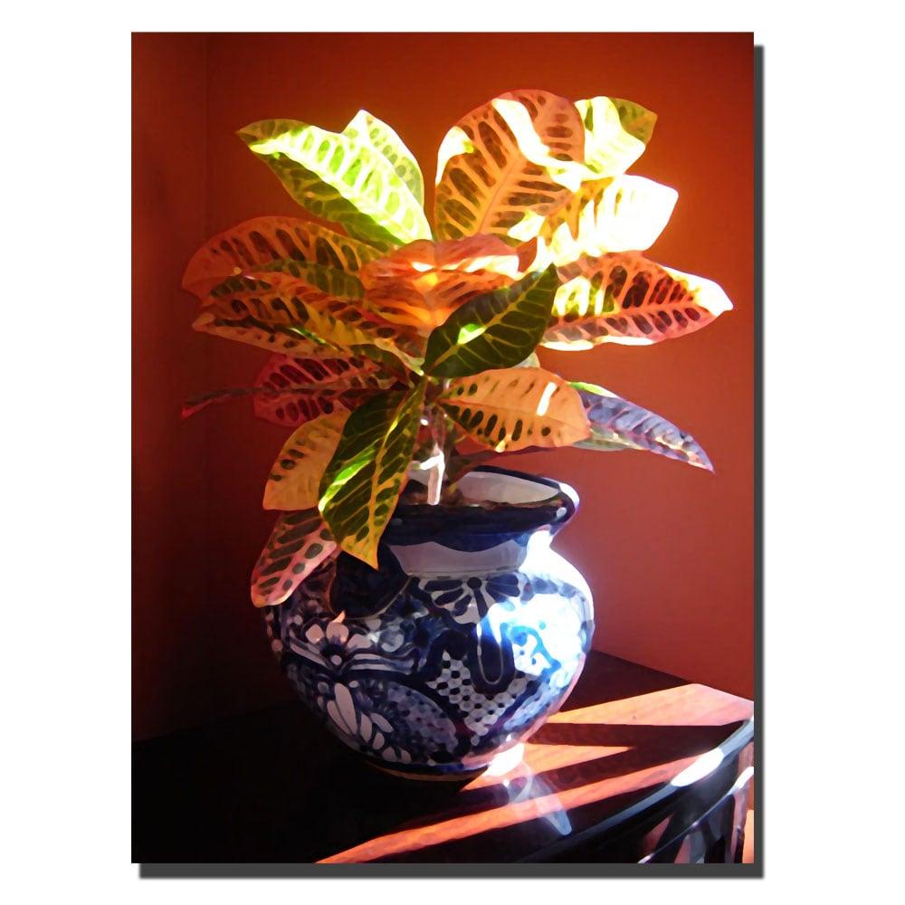 Amy Vangsgard 'Croton in Talavera Pot' Canvas Art