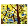 Amy Vangsgard 'Spring Tree' Horizontal Canvas Art