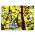Amy Vangsgard 'Spring Tree' Canvas Art