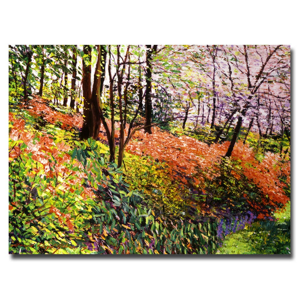 David Glover 'Magic Flower Forest' Canvas Art