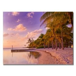 Preston 'Cayman Beach Full' Canvas Art
