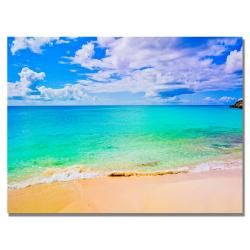 Preston 'Maho Beach' Canvas Art