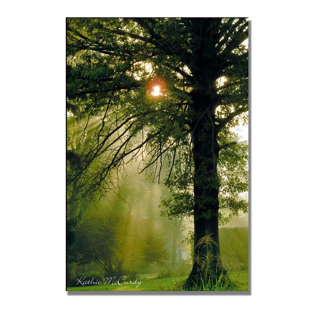 Kathie McCurdy 'Magical Tree' Canvas Art