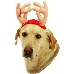 Vo-Toys Plush Pet Antlers with Small Bell for Larger-breed Dogs