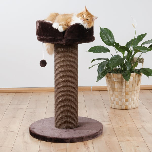 Pepino Cat Scratching Post