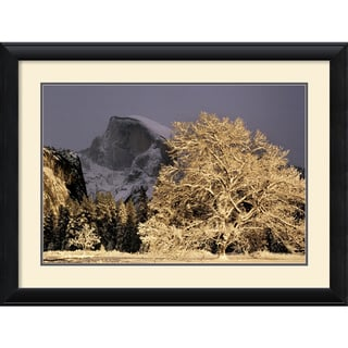 William Neill 'Half Dome and Elm' Framed Art Print