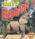 What Is an Elephant? (Paperback)