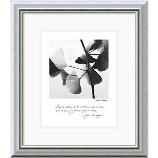 Debra Van Swearingen 'Delicate Ginkgo' Framed Art Print