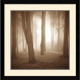 Alan Klug 'Woods Study II' Framed Art Print