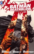 Batman/Deathblow: After the Fire (Hardcover)