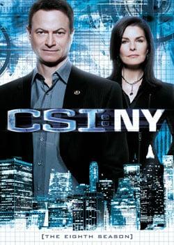 CSI: NY: The Complete Eighth Season (DVD)