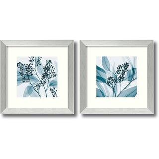 Steven N. Meyers 'Eucalyptus Set' Framed Art Print