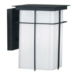 Kayson 1-light Medium Wall Lantern