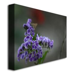 Patty Tuggle 'Purple Flowers and Moth' Canvas Art (Refurbished)