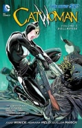 Catwoman 2: Dollhouse The New 52 (Paperback)