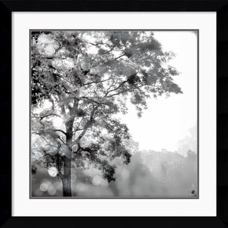 Wild Apple Photography 'Sun Dappled I' Framed Art Print