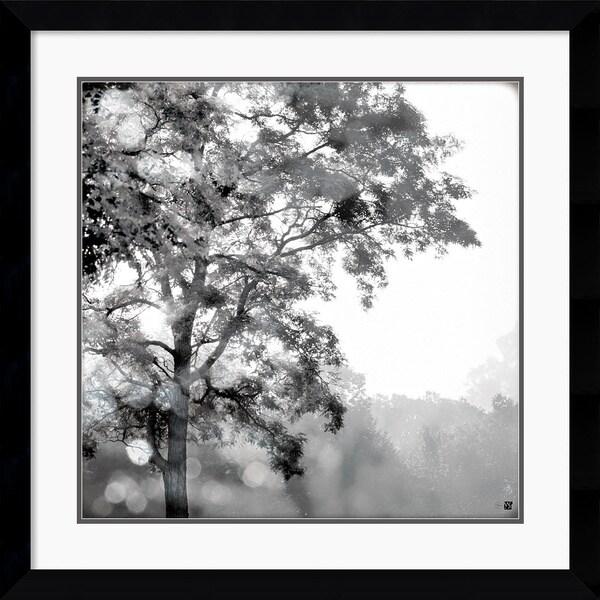 Wild Apple Photography 'Sun Dappled I' Framed Art Print