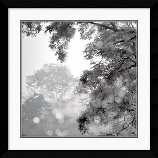 Wild Apple Photography 'Sun Dappled II' Framed Art Print