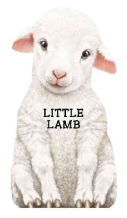 This Little Lamb (Board book)