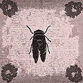 Ankan 'Vintage Insect 2' Gallery-wrapped Canvas Art