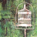 Art In Style 'Birdcage in Nature' Giclee On Canvas Art
