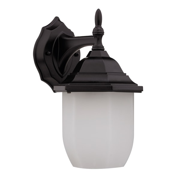Transitional Dark Rubbed Bronze 1-light Outdoor Wall Fixture