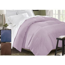 All-season Baffle Box White Down Comforter