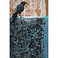 Maxwell Dickson 'Crow' Bird Canvas Wall Art