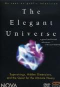 Elegant Universe (DVD)