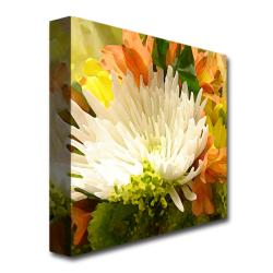 Amy Vangsgard 'Spring Flower Burst' Medium Canvas Art
