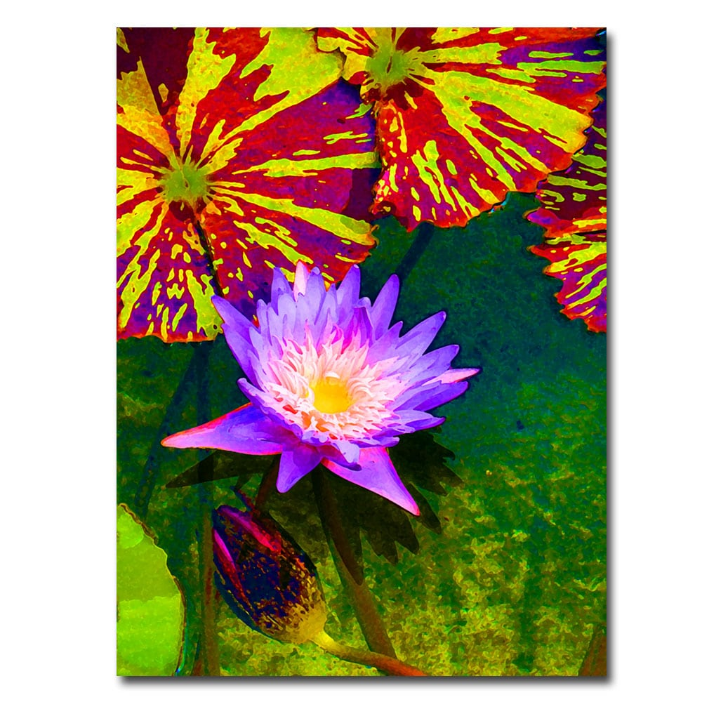 Amy Vangsgard 'Waterlily' Gallery-Wrapped Canvas Art