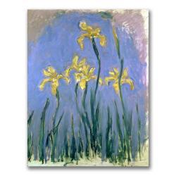 Claude Monet 'The Yellow Irises, 1918-25' Canvas Art