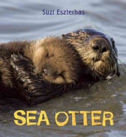 Sea Otter (Hardcover)