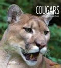 Cougars (Paperback)