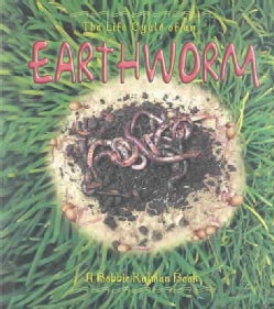 The Life Cycle of an Earthworm (Paperback)