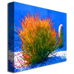 Amy Vangsgard 'Firesticks on Blue' Small Canvas Art