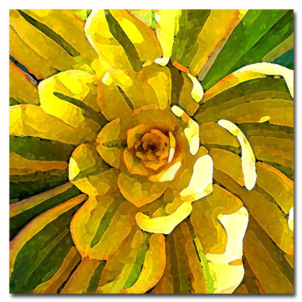Amy Vangsgard 'Succulent Square VII' Canvas Art