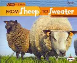From Sheep To Sweater (Paperback)