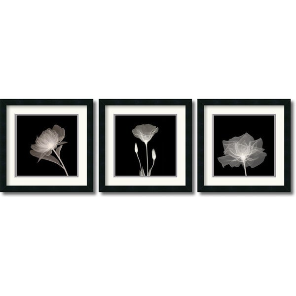 Translucent Floral Framed Art Print Set