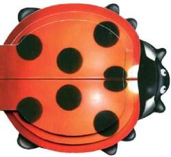 Little Ladybug (Board book)
