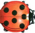 Little Ladybug (Board book)