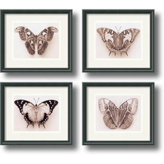 Raquel Edwards 'Butterflies' Framed Art Print Set